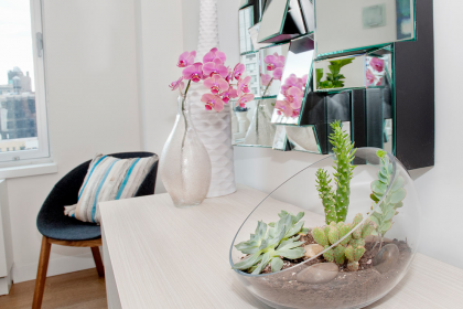 Top 5 Indoor Plant Care Tips | Eko Pearl Towers
