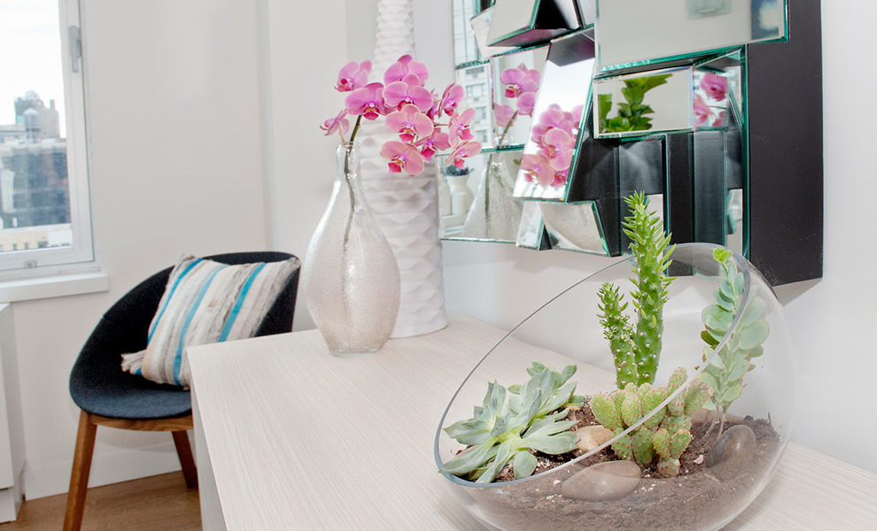 Top 5 Indoor Plant Care Tips | Eko Pearl Towers
