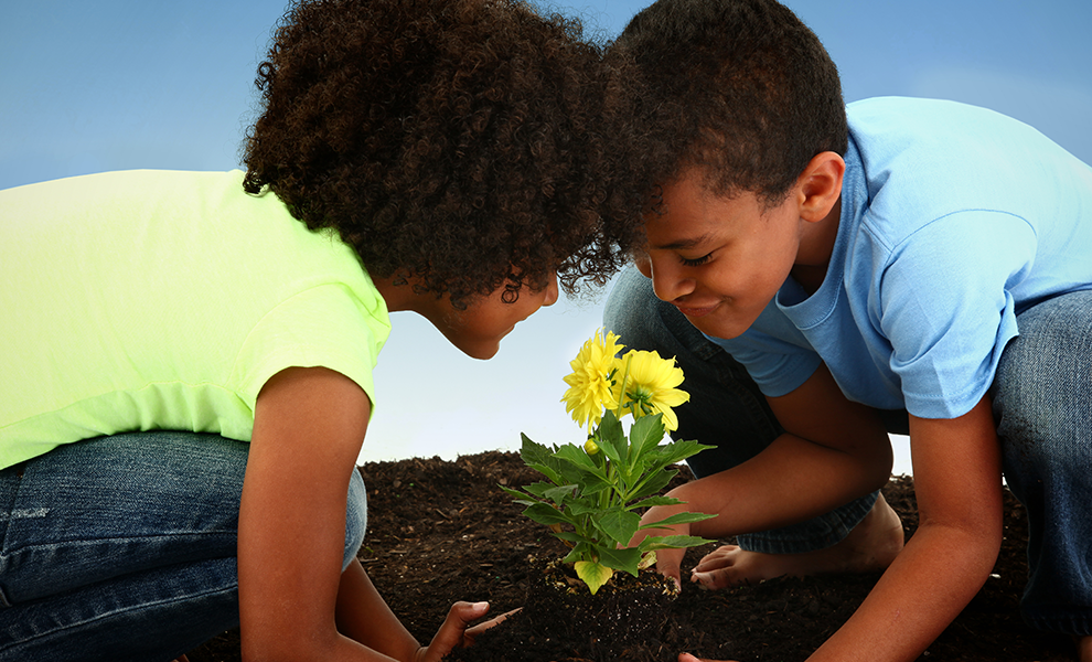 This New Year Teach Your Kids To Go Green | Eko Pearl Towers